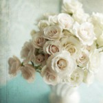 Как хранить розы в вазе: несколько советов