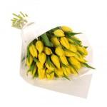 Как хранить тюльпаны: продлеваем жизнь срезанным цветам