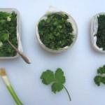Как заморозить зелень без потери качества?
