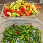 Как хранить горький перец