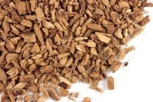 Лечебные свойства корня аира
